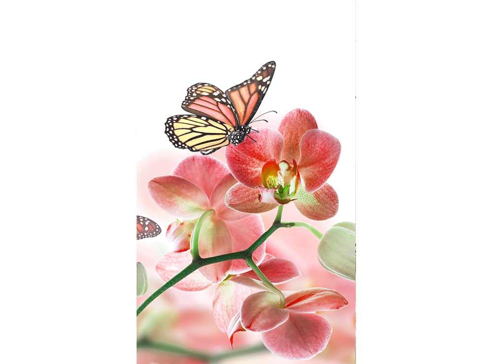 DIMEX vliesová fototapeta 150 x 250 cm MS-2-0146