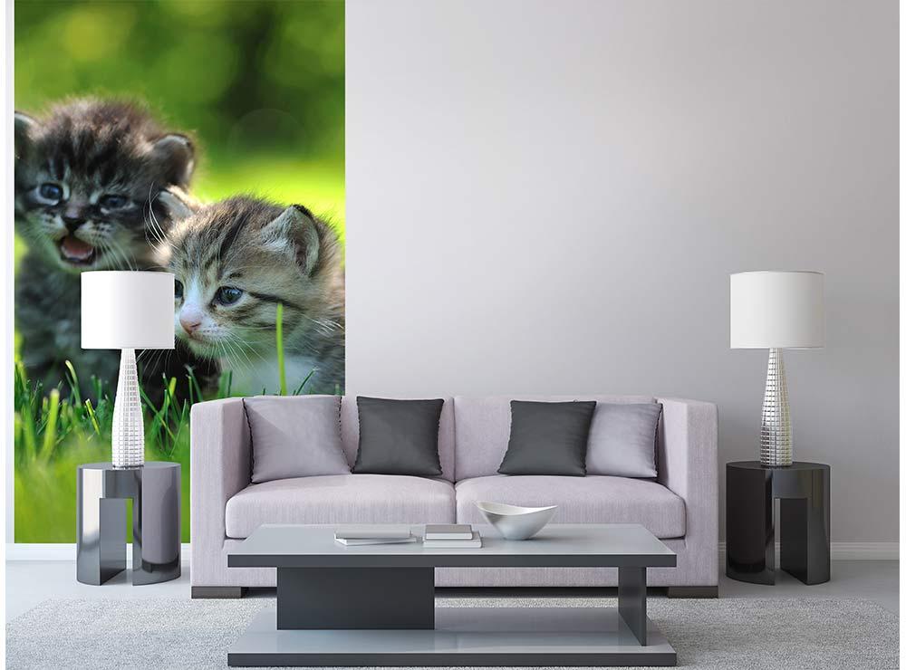 DIMEX vliesová fototapeta 150 x 250 cm MS-2-0222
