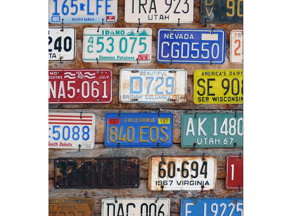 DIMEX vliesová fototapeta 225 x 250 cm MS-3-0269