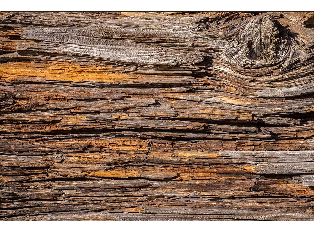 DIMEX vliesová fototapeta 375 x 250 cm MS-5-0159