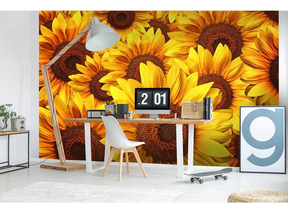 DIMEX vliesová fototapeta 375 x 250 cm MS-5-0129