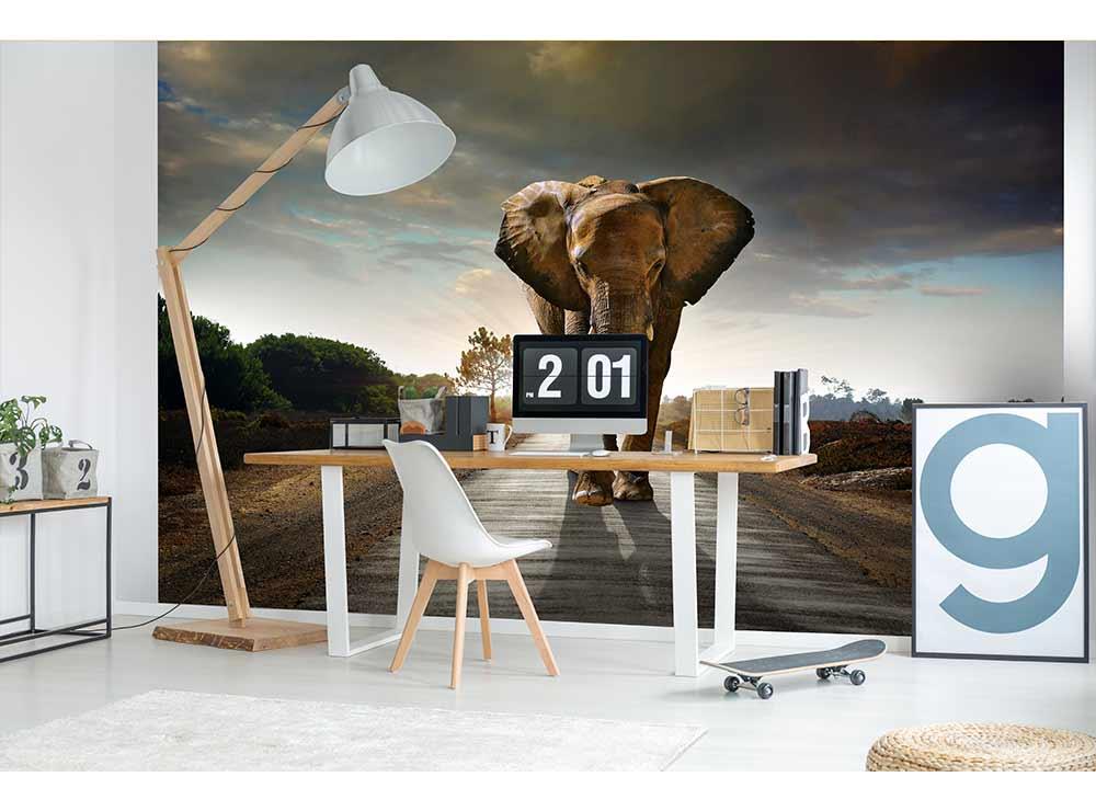 DIMEX vliesová fototapeta 375 x 250 cm MS-5-0225