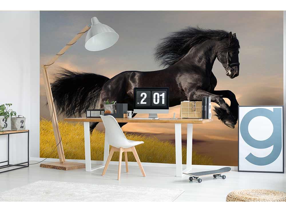 DIMEX vliesová fototapeta 375 x 250 cm MS-5-0228