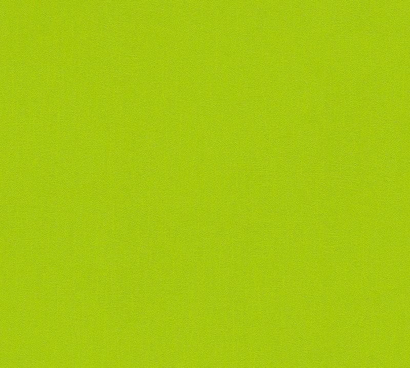 3462-16 tapety na zeď Pop Colors - vliesové tapety